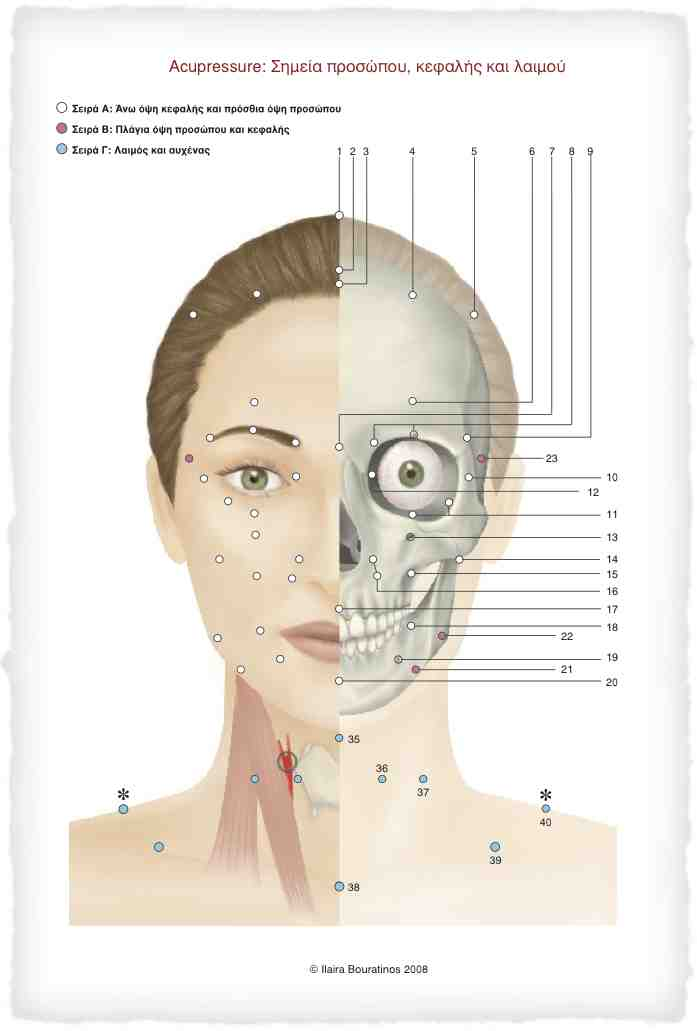 Facial acupressure points