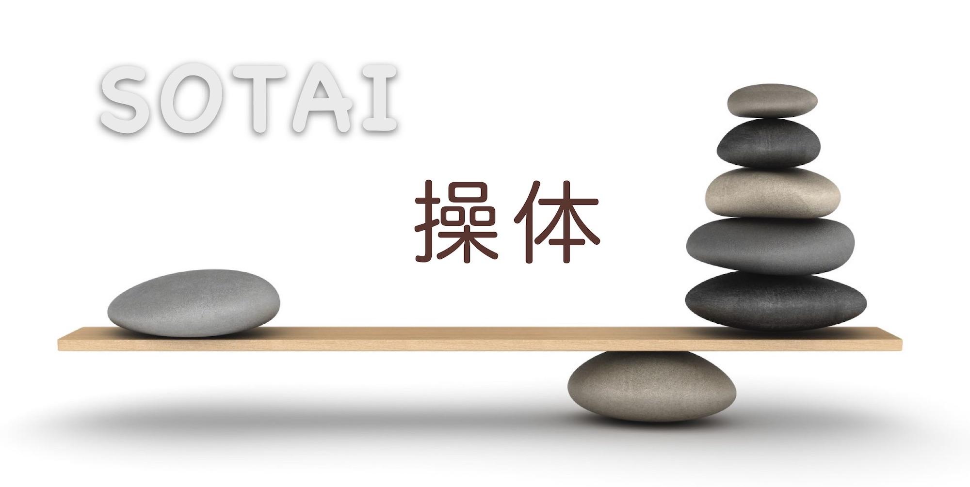 sotai-logo-white
